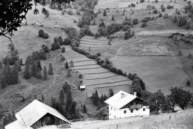 Astlehenhof, Blick auf die gegenüberliegenden Felder, ca. 1964, © Fam. Raab aus Köln