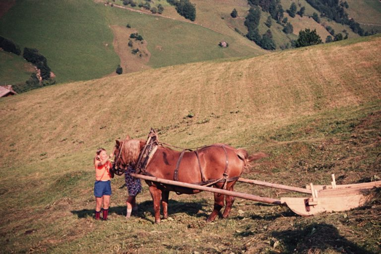 Mädchen mit Pferd samt Heuschlitten, ca. 1964, © Fam. Raab aus Köln