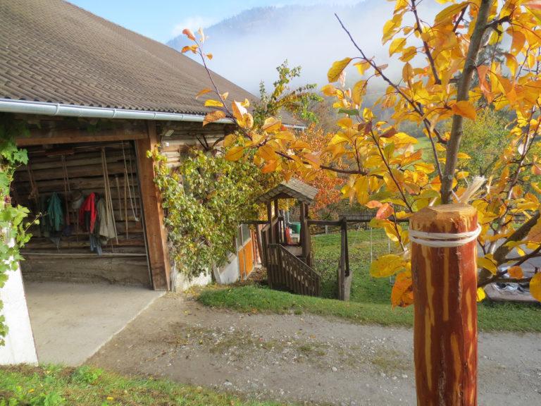 Herbst am Astlehenhof