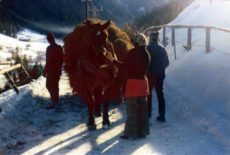Winterarbeiten am Astlehenhof
