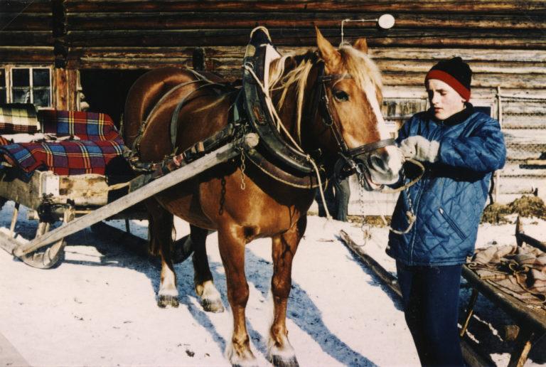 Adam Rettensteiner als junger Bursch beim Einspannen des Pferdes, 1964
